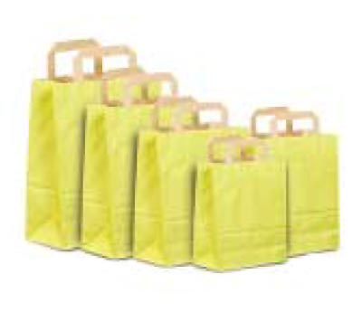 Paper Handle Colour Tone on Pinstripe Natural Bags - Green