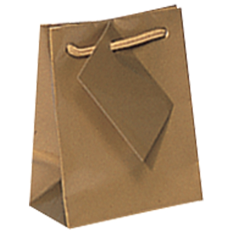 Gloss Paper Shopping Bags