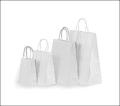 Simple Style Shopping Bags