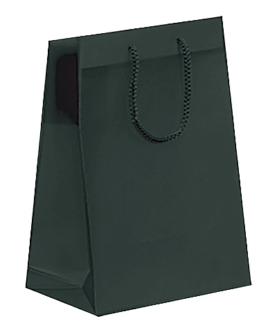 Frosted Plastic Tote Bags - Black