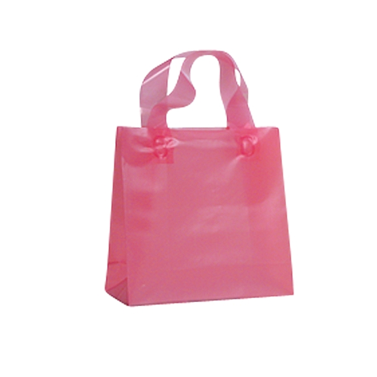 Biodegradable Loop Handle Frosted Bags