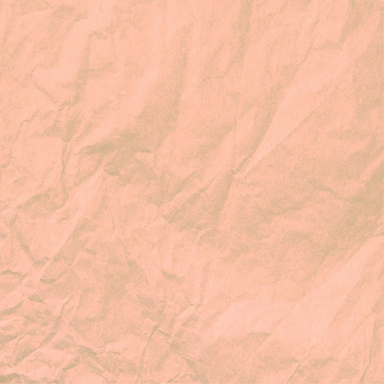 Water Resistant Elite Waxed Tissue Paper - Peach