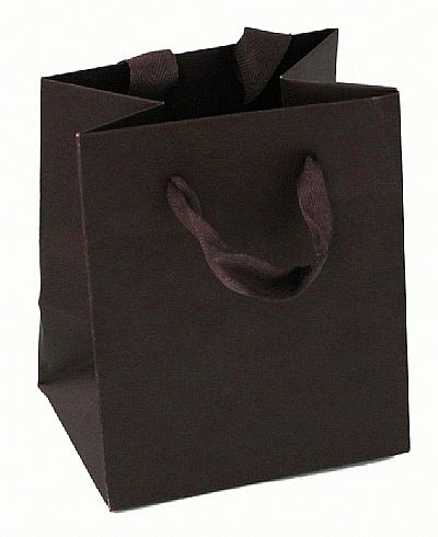 Paper Bags With Twill Handles - Expresso