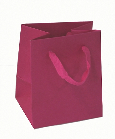 Paper Bags With Twill Handles - Fuschia