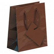 Gloss Paper Shopping Bags - Brown