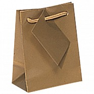 Gloss Paper Shopping Bags - Gold