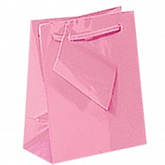 Gloss Paper Shopping Bags - Pink