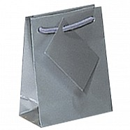 Gloss Paper Shopping Bags - Silver