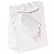 Gloss Paper Shopping Bags - White