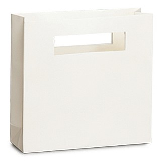 Modern Laminated Paper Bags