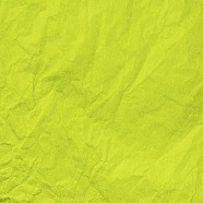 Water Resistant Elite Waxed Tissue Paper - Citrus Green